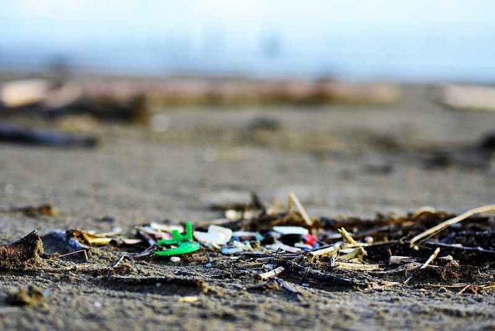We need to rethink our use of plastic and we need to do it now.