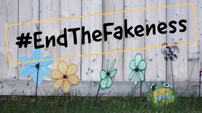 JustMeneesha, Meneesha Govender, blog, freelance, freelancer, entrepreneur, fake, instagram